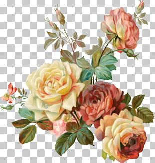 Flower Garden Roses Vintage Clothing Paper Shabby Chic PNG