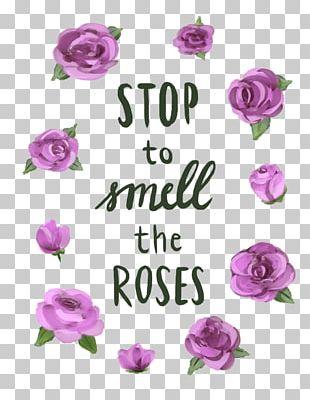Garden Roses Floral Design Cut Flowers Pink M PNG