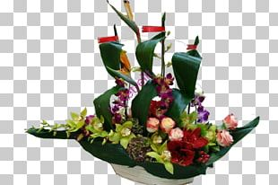 Floral Design Flower Bouquet Cut Flowers Композиция из цветов PNG