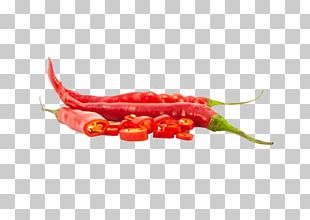 Habanero Chile De árbol Bird's Eye Chili Serrano Pepper Tabasco Pepper PNG