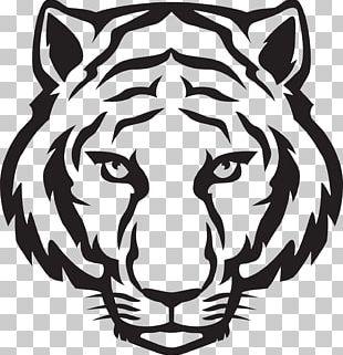 Tiger Drawing Art Sketch PNG