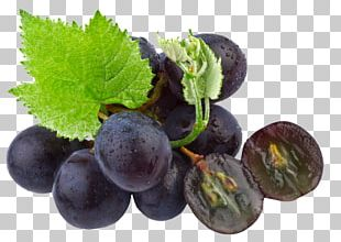 Common Grape Vine Grape Seed Oil Organic Food PNG