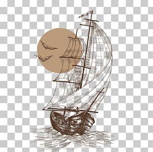 Gulls Sailboat Sailing Ship PNG