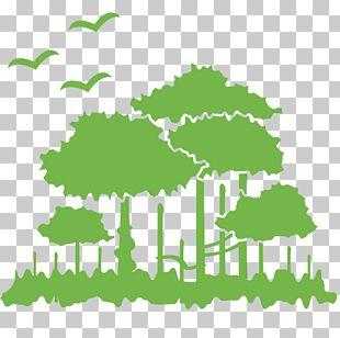 Environment PNG