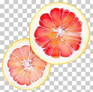 Grapefruit Juice Vegetarian Cuisine Pomelo Blood Orange PNG