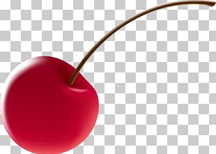 Cherry Watercolor Painting Red PNG