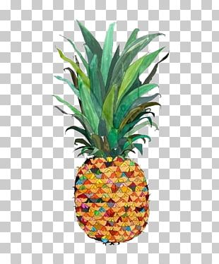 Pineapple Drawing Watercolor Painting Illustration PNG