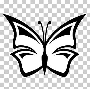 Butterfly Black And White Free Content PNG