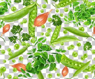 Pea Birds Eye Chili Food PNG