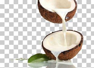 Coconut Milk Coconut Water Coconut Oil PNG