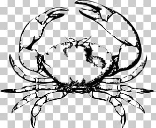 Chesapeake Blue Crab Red King Crab Free Content PNG