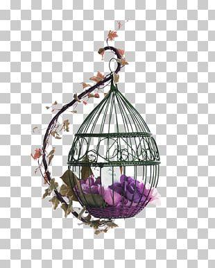 Purple Fresh Bird Cage Decoration Pattern PNG