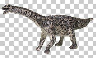 Spinophorosaurus Dinosaur Tyrannosaurus Bullyland Velociraptor PNG