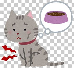 Cat Food Russian Blue American Shorthair National Cat Day In Japan Dog PNG