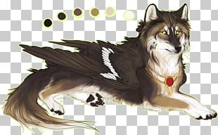 Dog Whiskers Drawing Cat PNG
