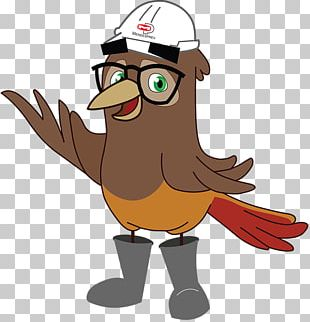 Mascot Rufous Hornero Education Cartoon PNG