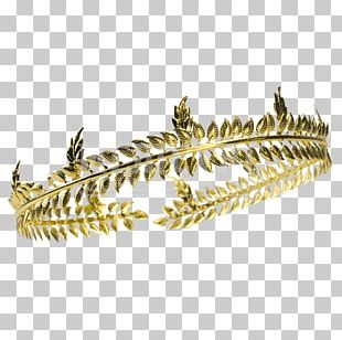Laurel Wreath Crown Bay Laurel Costume PNG