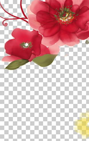 Section 3.8 Goddess Plant Flowers PNG
