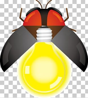 Firefly Insect Illustration Yellow PNG