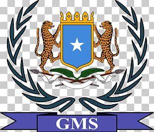Embassy Of Somalia Somalis Federal Government Of Somalia Federal Parliament Of Somalia Somaliland PNG