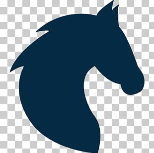 Thoroughbred Stallion Colt Horse Head Mask Computer Icons PNG