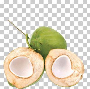 Coconut Water Es Kelapa Muda Coconut Milk Thai Cuisine PNG