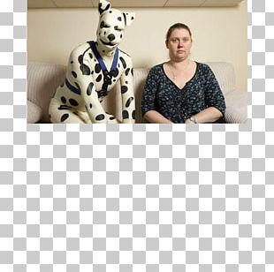 Puppy Dalmatian Dog Male Cat People And Dog People Domestication PNG