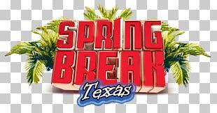 Casa Blanca Park Hotel Balneário Camboriú Spring Break Texas PNG