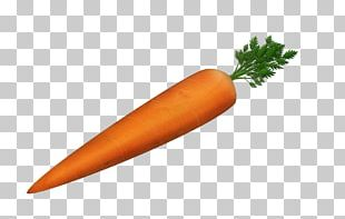 Carrot Cake Tomato Soup Food Vegetable PNG