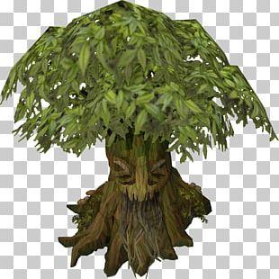 RuneScape Willow Tree Spirit PNG