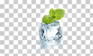 Chewing Gum Mint Flavor Menthol Electronic Cigarette Aerosol And Liquid PNG