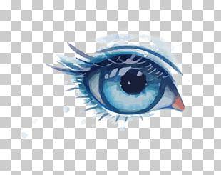 Eye Euclidean PNG