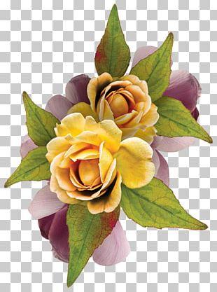 Garden Roses Flower Floral Design Birthday PNG