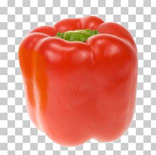 Bell Pepper Cayenne Pepper Chili Pepper Vegetable Black Pepper PNG
