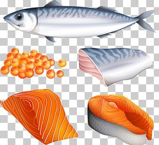 Salmon Fish PNG
