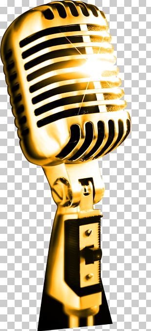 Microphone Art Drawing Professional PNG