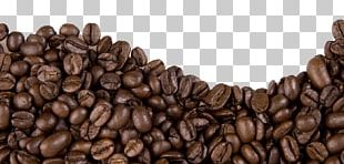 Jamaican Blue Mountain Coffee Cafe Coffee Bean PNG