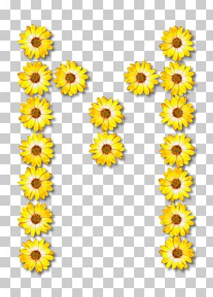Common Sunflower Floral Design PNG