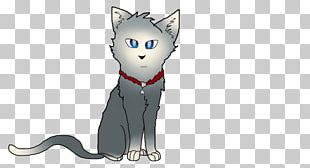 Whiskers Cat Dog Canidae Mammal PNG