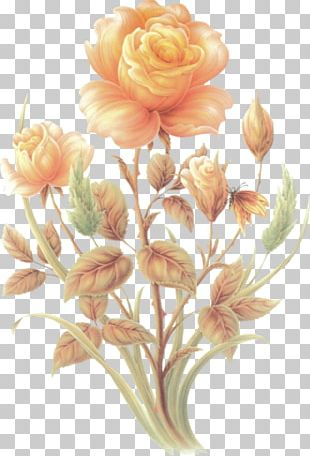 Cut Flowers Centifolia Roses Floral Design PNG