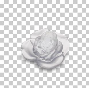 White Rose Flower Green Red PNG