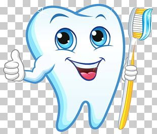 Human Tooth Dentist Toothbrush PNG