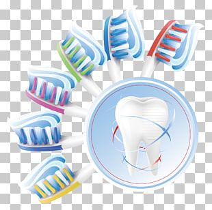 Human Tooth Dentistry Teeth Cleaning PNG