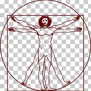 Vitruvian Man PNG