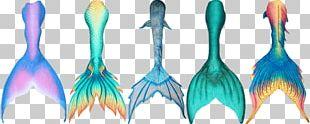 Mermaid Drawing Siren Tail Merman PNG