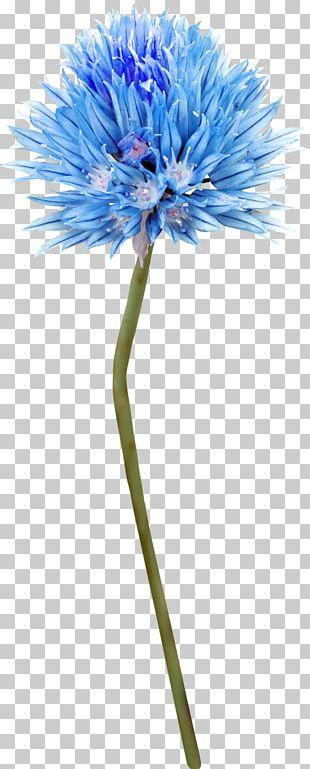 Cut Flowers Blue Tattoo Plant Stem PNG