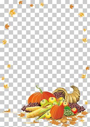 Thanksgiving Cornucopia PNG