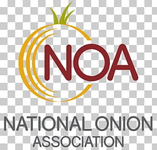 Cheese And Onion Pie National Onion Association Quiche Cooking Potato Onion PNG
