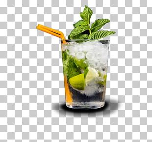 Mojito Caipirinha Caipiroska Cocktail Garnish Mint Julep PNG