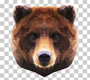 Brown Bear Polar Bear Moose Grizzly Bear PNG